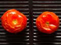 Baked tomatoes Royalty Free Stock Photo