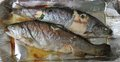 Baked trout fish Royalty Free Stock Images