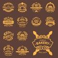 Bakery gold badge icon fashion modern style wheat vector retro food label design element .