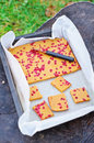 Baking tray with lingonberries cake Stock Images