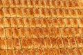 Baklava Royalty Free Stock Photo