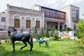 Baku azerbaijan june garden of the villa petrolea exterior nobel with classic statue and door green and horses Royalty Free Stock Photos
