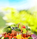 Balanced diet based on raw organic vegetables Royalty Free Stock Photo
