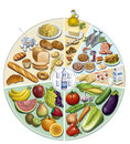 Balanced diet the proportions of use aconsegables illustration of feeding wheel with desirable proportions of use Stock Images