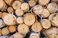 Balances of birch Royalty Free Stock Photo