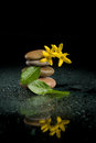Balancing zen stones on black with yellow flower pebble and water drop stone background spa tranquil scene concept reflection Royalty Free Stock Photos