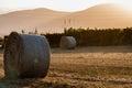 Balas de trigo paja en un campo Royalty Free Stock Photography