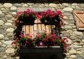 Balkón kvety v starý z