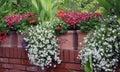 Balcony flowers Royalty Free Stock Photo