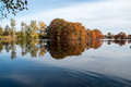 Bald cypress in automn french countryside lake with reflections Stock Photo