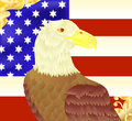 Bald eagle an american flag Stock Image