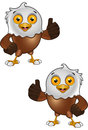 Bald Eagle Character Stock Images