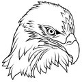 Bald eagle head black outline illustration vector Stock Image