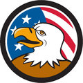 Bald Eagle Head Smiling USA Flag Circle Cartoon