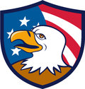 Bald Eagle Smiling USA Flag Crest Cartoon