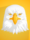 Bald eagle vector a image of a this is very good for design that needs head element or design Stock Photo