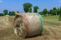 Bale of hay a in a field in the italian countryside Royalty Free Stock Images