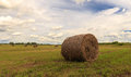 The bale of hay lying on field against sky Stock Image