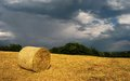 Bale of hay with stormy background Stock Images