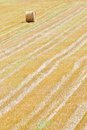 Bale of straw on a field Stock Image
