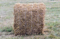 A bale of straw on a field after harvest. Royalty Free Stock Photo
