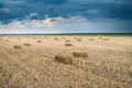 Bale of straw in the field stubble Stock Photography
