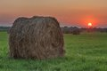 Bale straw on field on sunset time Royalty Free Stock Images