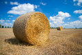 Bale of straw round on a field blue sky in the background Royalty Free Stock Photography