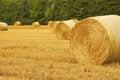 Bale of wheat field Royalty Free Stock Photo