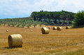 Bales of hay landscape with as a concept summer Stock Photo