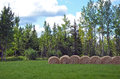 Bales of hay in meadow Royalty Free Stock Photo
