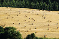 Bales of hey on harvested agriculture field Royalty Free Stock Photo