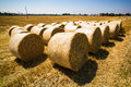 Bales of straw and cereals on a field grain occur after harvest Royalty Free Stock Images