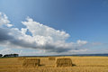 Bales of straw after harvest in a field in denmark Royalty Free Stock Images