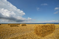Bales of straw after harvest in a field in denmark Royalty Free Stock Photos