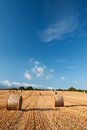 Bales of straw in the wheat fields burgos spain Stock Photography