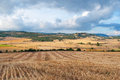 Bales of straw in the wheat fields harvested Royalty Free Stock Images