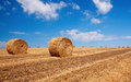 Bales of wheat in summer time Stock Images