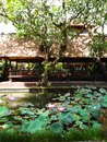 Bali restaurant in pavilion lotus pond a photograph showing the beautiful and tranquil outdoor setting of an upscale balinese set Royalty Free Stock Image