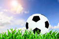 Ball and blue sky with sun flare on green grass Royalty Free Stock Photo