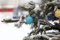 Ball on christmas tree the snowy at park Stock Photo