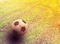 Ball on the grass Royalty Free Stock Photo