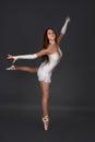 The ballerina  dances Royalty Free Stock Photo