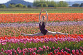 Ballerina In a Field of Tulips Stock Photography
