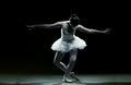 Ballet dancer-action Royalty Free Stock Photo
