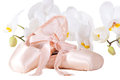 Ballet pointes with orchids on isolated white Stock Photography