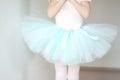 Ballet Tutu Closeup