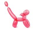 Balloon dog on a white background Stock Photos