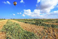 The balloon flies over a field of wheat Stock Photo