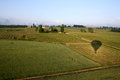 Balloon ride through the fields of France Royalty Free Stock Photo